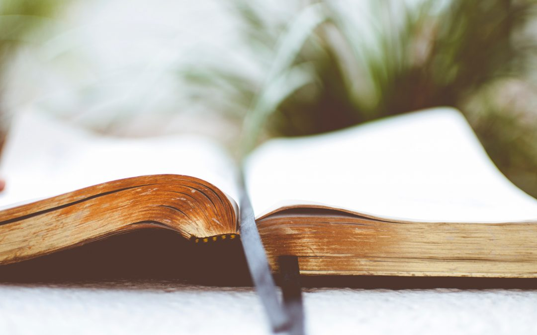 Thoughts on The Book of Revelation & The Current Moment